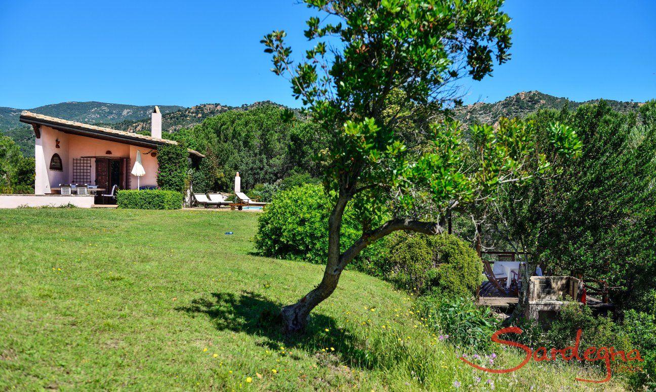 Giardino naturale, casa, piscina, verande