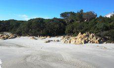 Spiaggia fronte casa