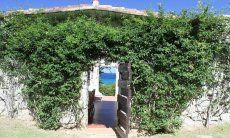 Entrata ricoperto di un rampicante verde di Casa 8 a Sant Elmo