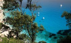 Vista sul mare trasparente di Cala Goloritze attraverso alberi e pini