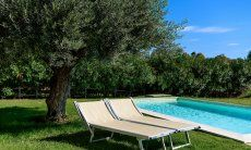 Piscina con lettini da sole a  Villa Campidano 21