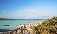 Accesso alla spiaggia La Pelosa Stintino