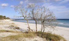Spiaggia di Cala Ginepro, Golfo di Orosei