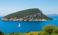 Barcavela davanti all'isola Figarolo a Golfo Aranci