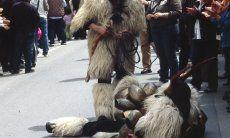 Fiesta degli agrumi, Muravera