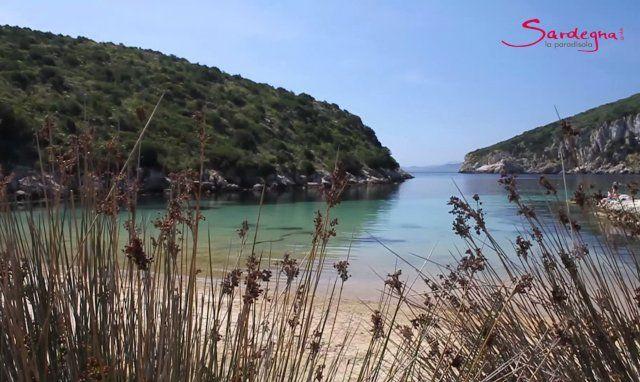 Video Spiaggia Cala Moresca